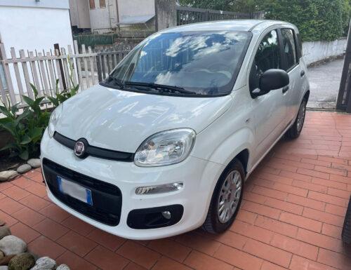 FIAT Panda 3° serie 1.3 MJT S&S Easy Van N1 4 posti autocarro